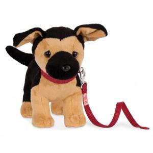 Our Generation hond Duitse herder